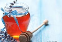 承德兴隆大力发展养蜂产业