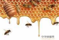 蜂蜜的有效减肥方法 搭配生姜、白醋、柠檬水可减肥