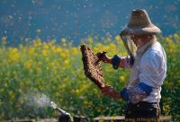 """关于召开""""中国养蜂学会七届二次常务理事会""""的通知"""