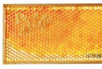 怎样辨别蜂蜜有没有加白糖  简单一招就知道