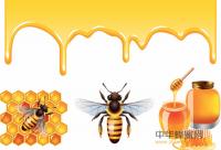 蜂蜜治疗胃、十二指肠溃疡的方法