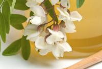 野生圆枣子富含什么及泡蜂蜜的做法