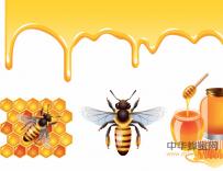 蜂胶酒的制作和使用方法
