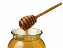 分蜂团的收捕方法和技巧 怎么把飞逃的蜜蜂收回来