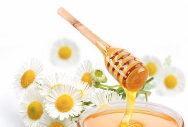 引诱山野蜜蜂秘法